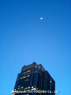 丸ビルとお月様