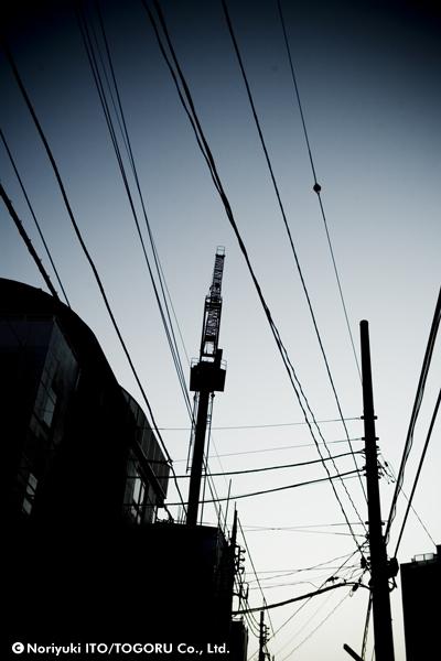 クレーンと電線の共演