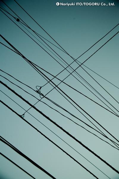 交差する電線たち