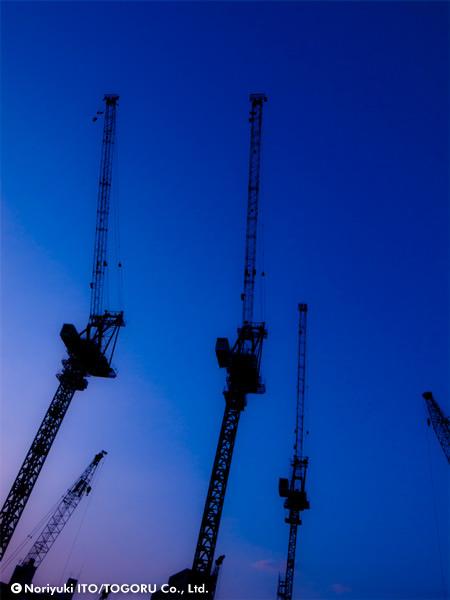 20100605-crane.jpg