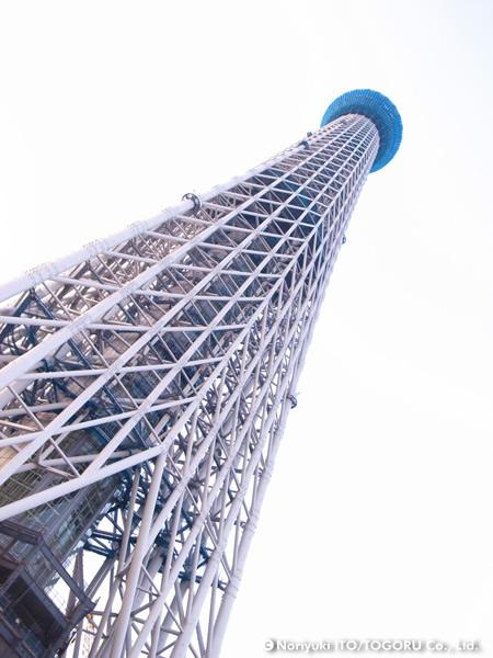 20100605-skytree2.jpg