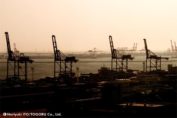 港の大型クレーンがサバンナのキリンに見えた