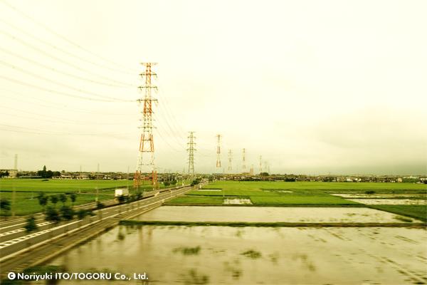 田んぼの広がる中、高電圧線の鉄塔が連なっている