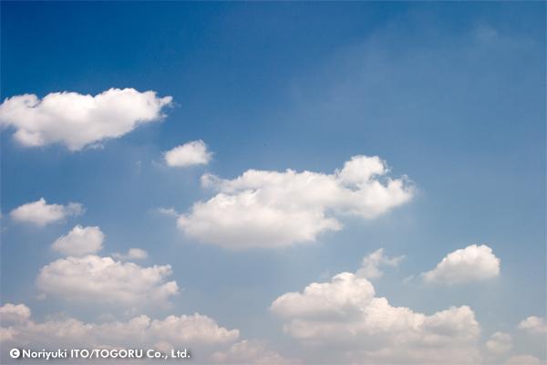 雲がポカポカと青空に散らばっている