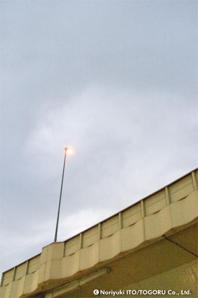 見上げるとほのかに明るい街路灯だけが見える