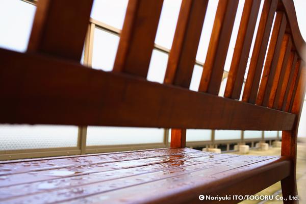 雨後のベンチの背中