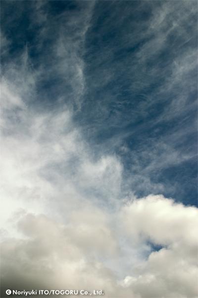 雲が綿菓子のように細く薄くつながっている