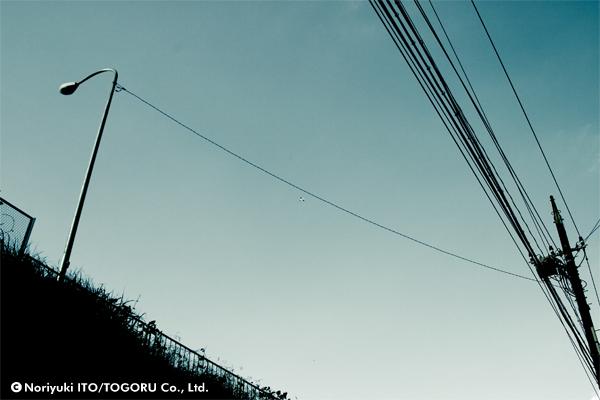 ワイヤーにぶら下がって飛んでいるように見える飛行機